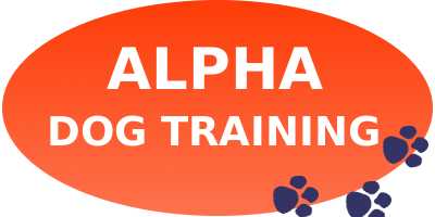 Alpha Dog Training and Behavioural Consultancy | Alpha Dog Training and Behavioural Consultancy – It is all about training
